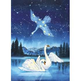 Лебедь (созвездие)