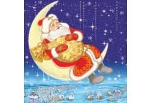Дед Мороз на месяце