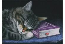 Любитель почитать