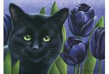 Черные тюльпаны