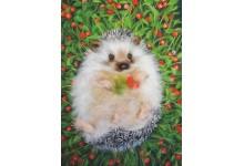 Foxberry Glade