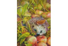 Apple Hedgehog