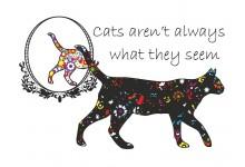 Кот коту рознь. Не всегда все так, как кажется