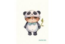 Совушка-панда