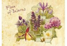 Флора Беларуси